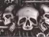 bio_skulls